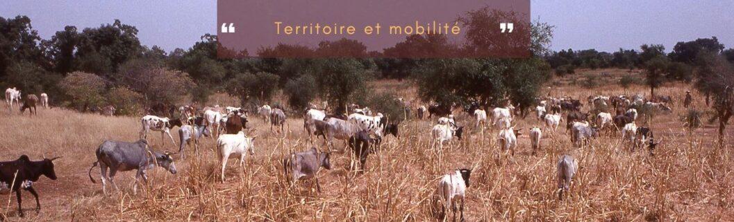 territoires et mobilité au Sahel