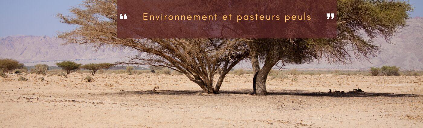 environnement et pasteurs peuls
