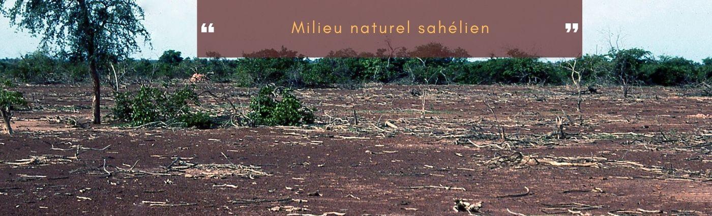 milieu naturel sahélien