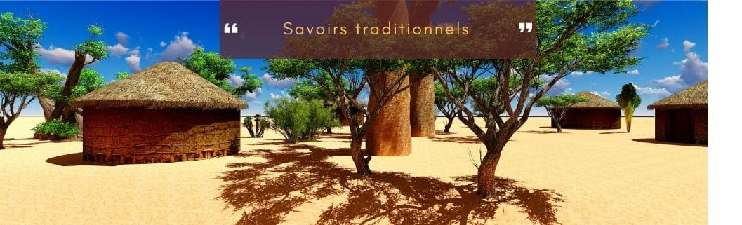 savoirs traditionnels