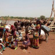 Une famille wodaabe et son troupeau
