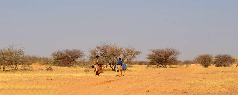 La désertification au Sahel