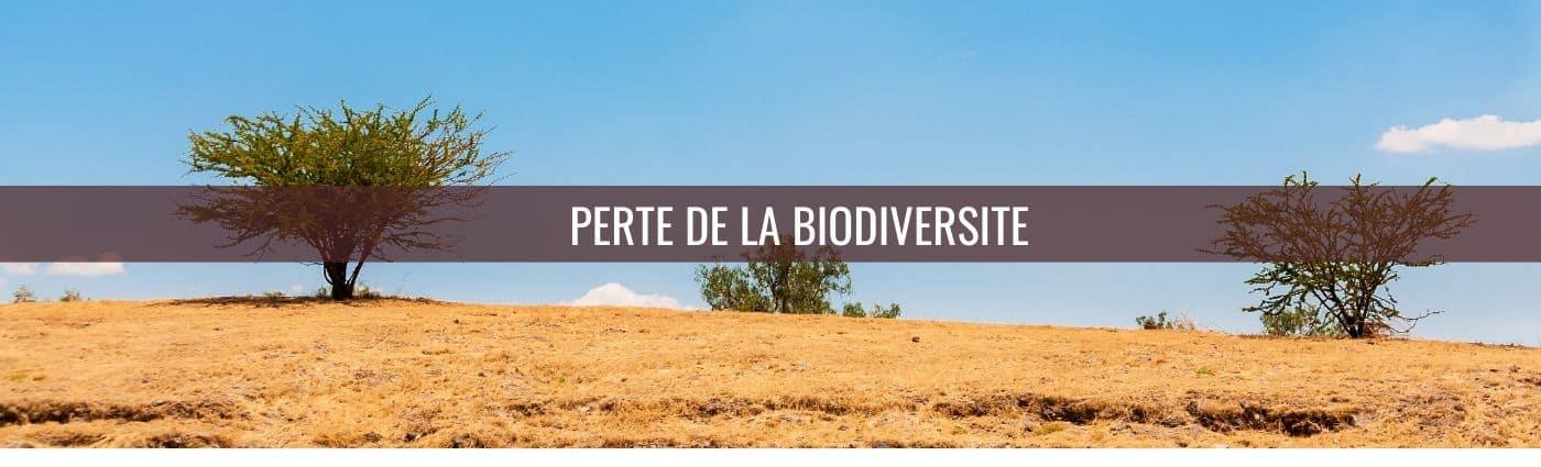 perte de la biodiversité