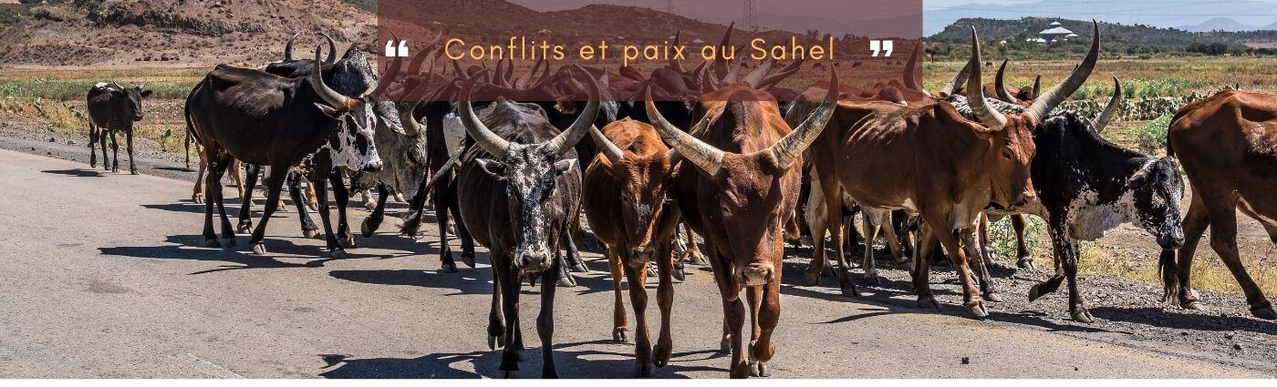 conflits et paix au Sahel