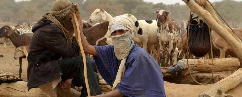 Nomade Du Sahara