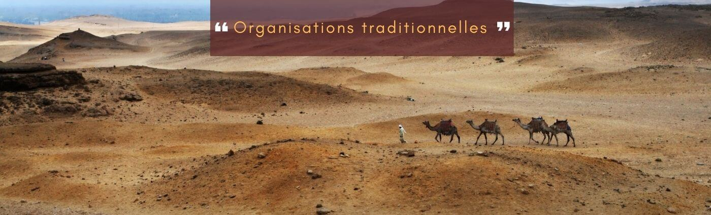 organisations traditionnelles